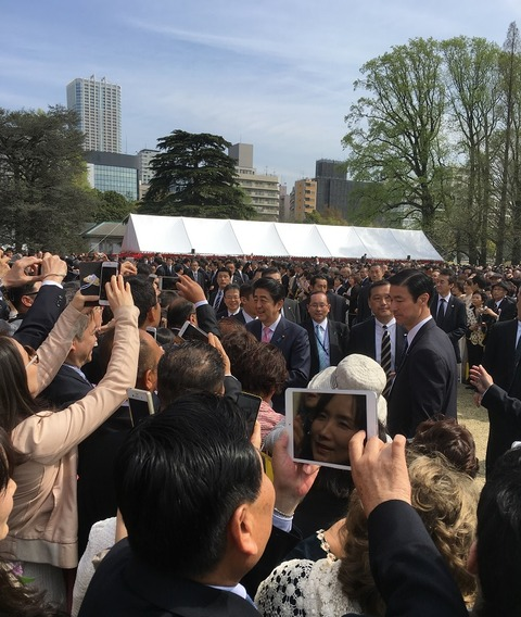 安倍総理と桜を観る会(観桜会)2