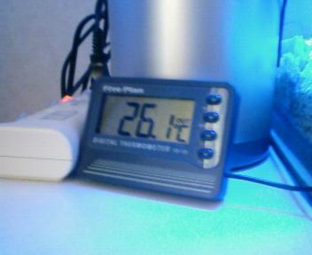 水温26℃