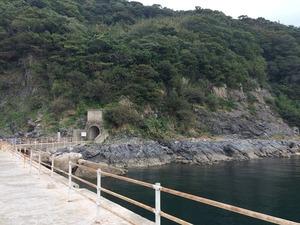 大津島-09