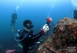 大島ダイビング写真