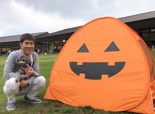 かぼちゃ&さくら