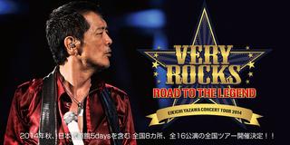 2015 YAZAWAツアー