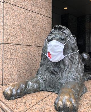 ライオンマスク