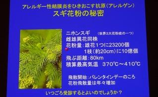 花粉症スライド