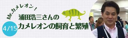ミスターカメレオン浦田浩三さんのカメレオンの飼育と繁殖