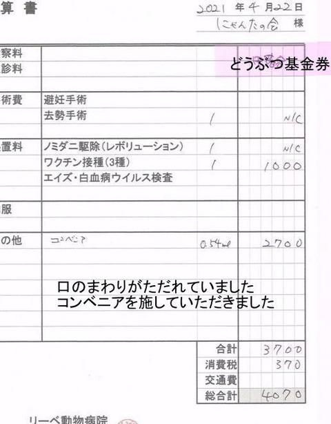 4070円