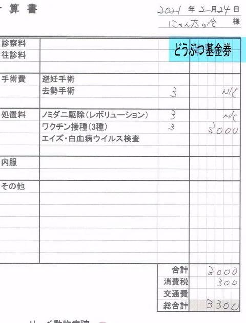 キリ新3300円