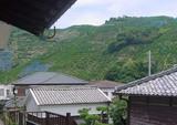 060616みかんの町に仏壇2