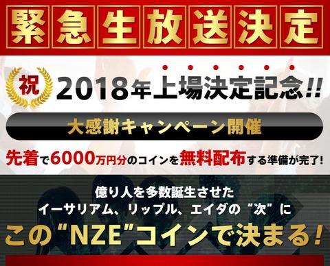 NZEコイン