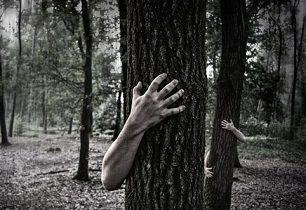 hands-984032__340