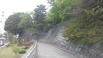 2011_05_20_13_01_00