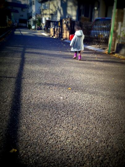 コートでお散歩