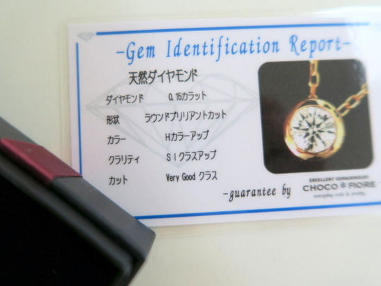IMG_0029-005