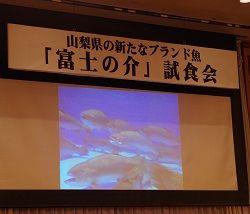 富士の介3