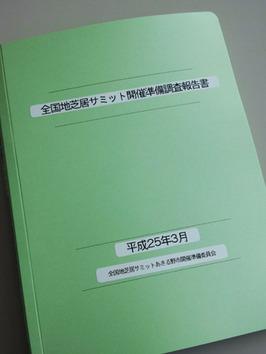 20130426 サミット報告書