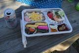 鹿屋バラ園にて奥さんの手造りの弁当をいただく 12