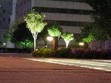 阪神尼崎駅前公園夜景1