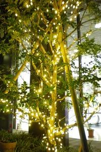 神戸貿易センタービルのライトアップ
