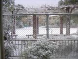 雪の北場公園
