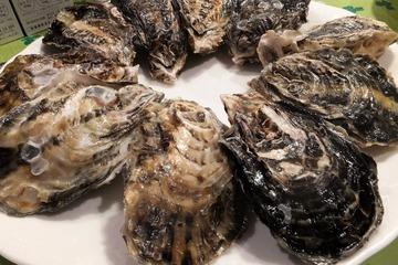 坂越漁港の牡蠣