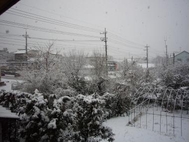 遊び心で楽しむ日刊ユウシン:2008年02月 - livedoor Blog(ブログ)