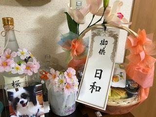2017hatsubon