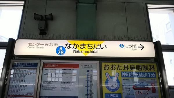 DSC_5515