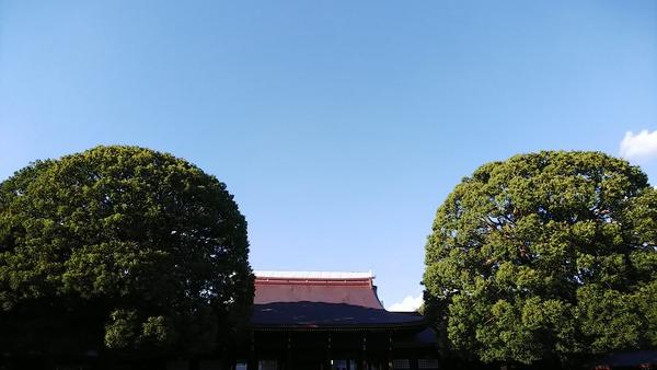 DSC_2244