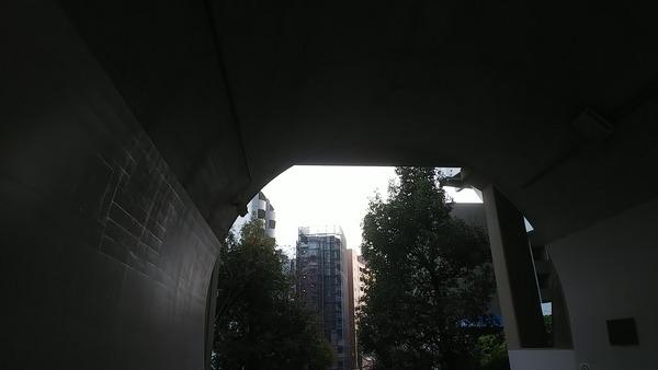 DSC_8390