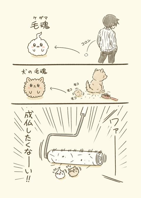 毛魂_001