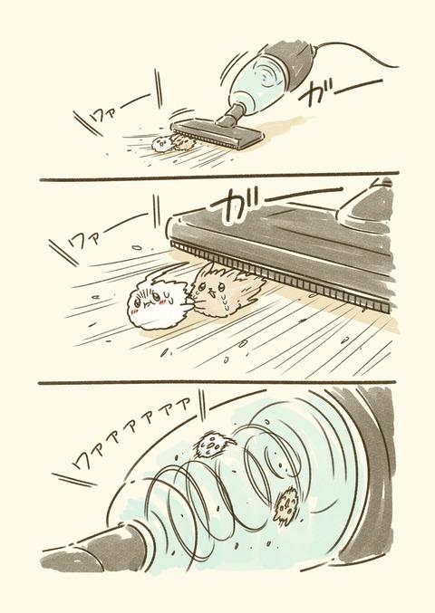 毛魂_002