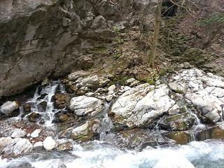 天の恵みの水