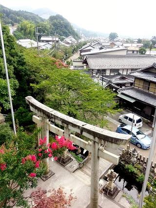 地蔵川(2)