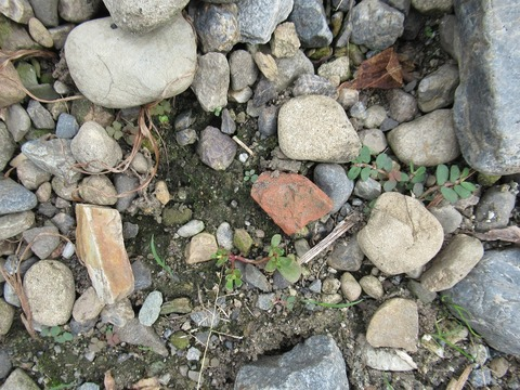 2号東側土器片
