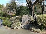名古屋城にて2