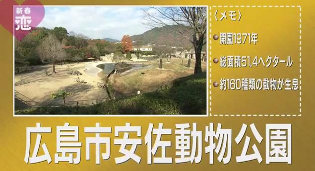 恋すぽ新春SP菊池久本マエケン017