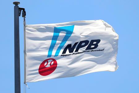 NPBロゴ2