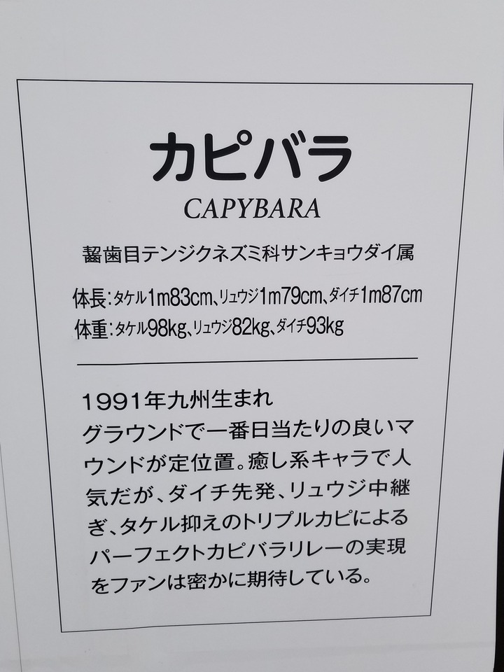 広島観光407