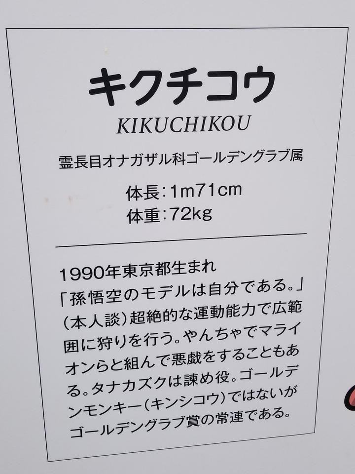 広島観光410