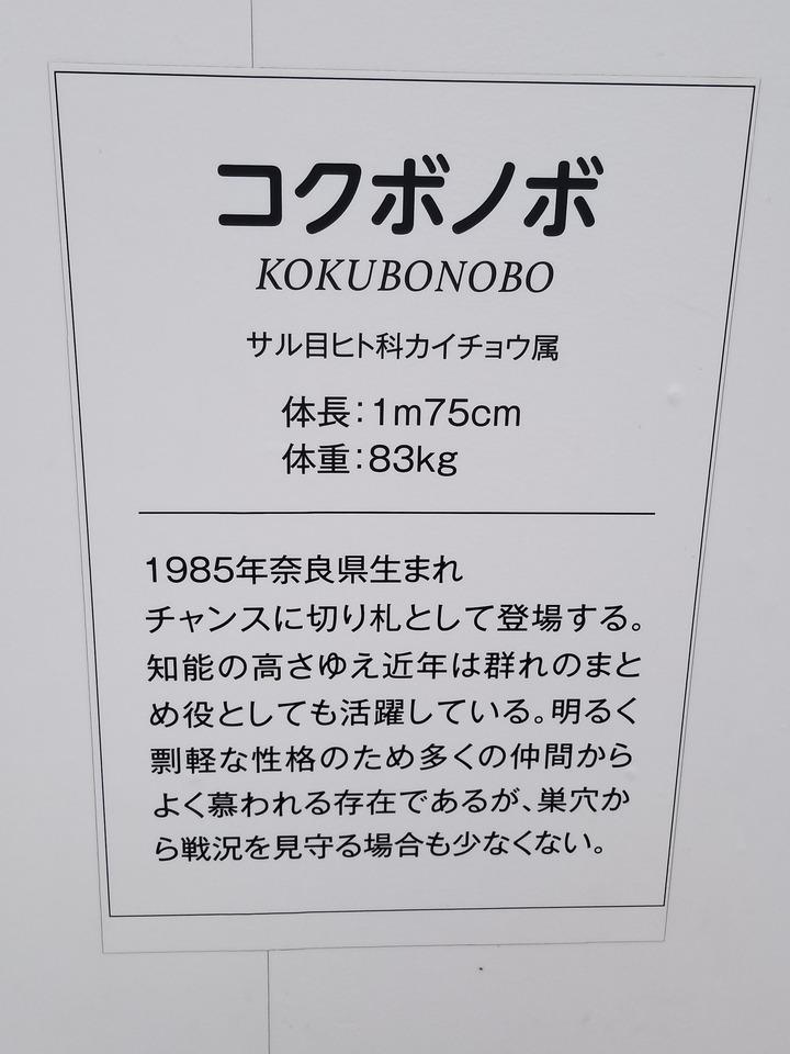 広島観光401