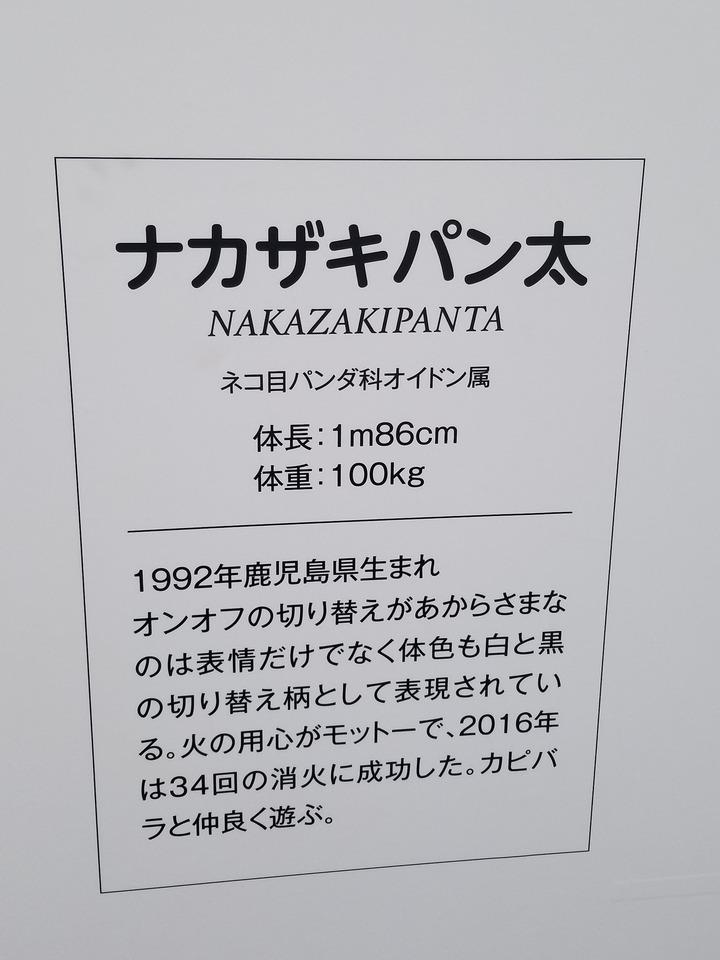 広島観光403