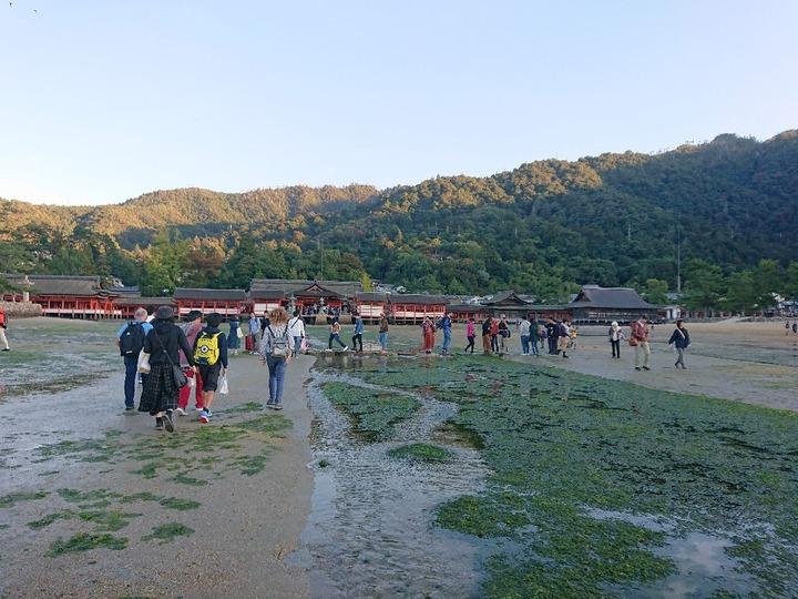 宮島観光68