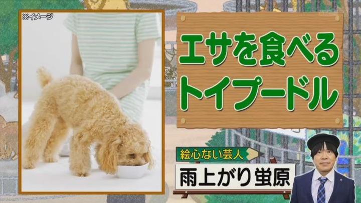 20170122アメトーーク絵心ない芸人マエケン108