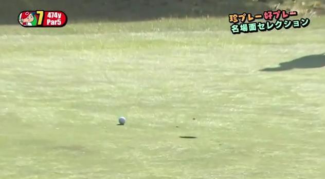 カープ選手会ゴルフ2014112