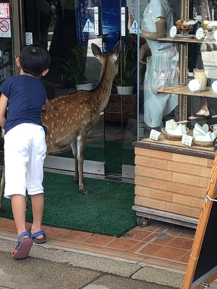 広島観光651
