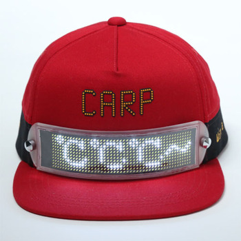 LED DISPLAY CAP2