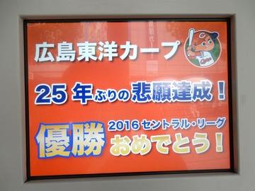 2016優勝カープファン191