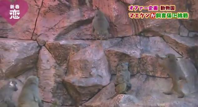 恋すぽ新春SP菊池久本マエケン024