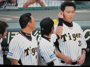 新井金本3