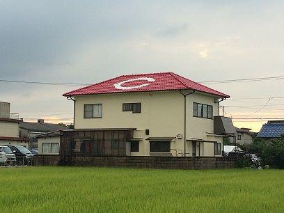 カープ屋根1